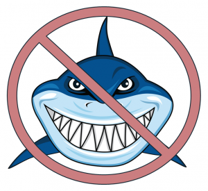 Company Culture - No Sharks